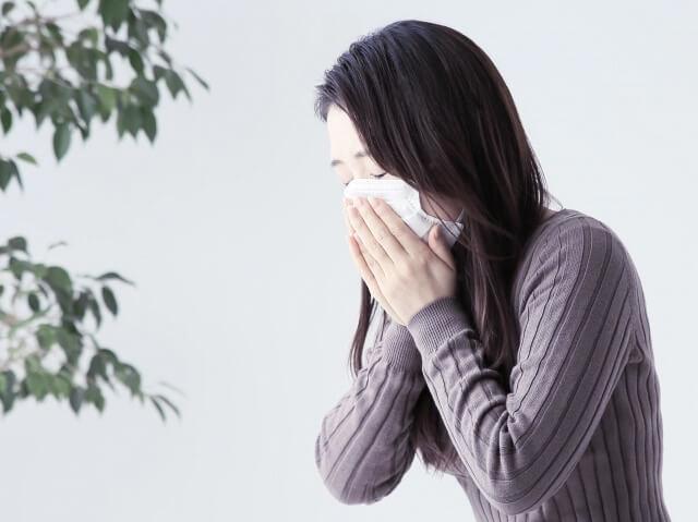 花粉症が食べ物を変えるだけで改善! 薬を使わない最も安い方法とは?