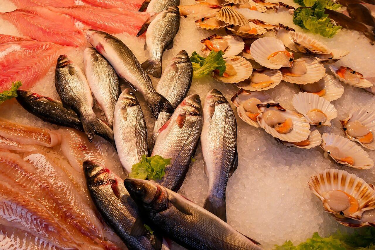 マイクロプラスチックによる魚の汚染の原因は? 早急な対策が必須
