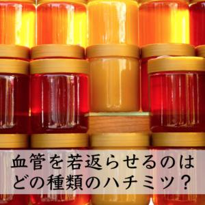ハチミツの種類によって健康効果が違う!? 血管を若返らせるのはどのハチミツ?