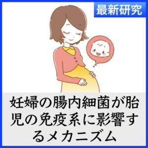 妊婦の腸内細菌の状態が子癇前症や胎児の免疫にも影響することが判明! (2019年最新研究)