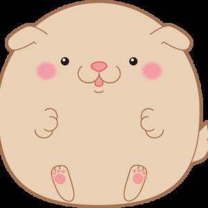 【動画】丸いワンちゃんがベロベロベロベロベロベロ〜