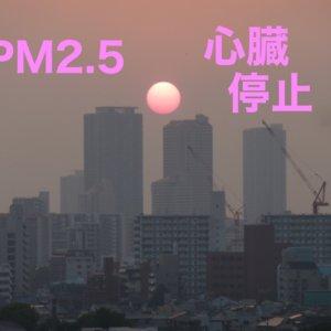 日本の大気中のPM2.5濃度がWHOの基準値以下でも心臓停止に影響していることが判明!?【2020年最新報告】
